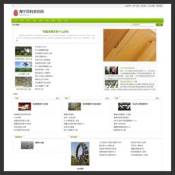 众筹定制拼团开发网站模板-帝国网站二次开发-帝国CMS模板-帝国模板-帝国CMS仿站-92拼团官网