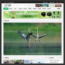 鸟网的网站缩略图