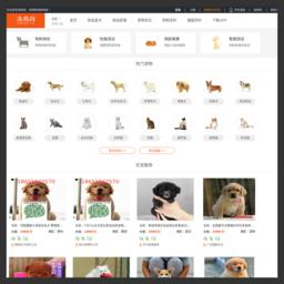 淘狗网-中国宠物狗销售商城