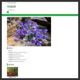 花卉图片网