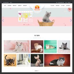 宠物猫|买猫|卖猫|猫市场|猫咪交易网