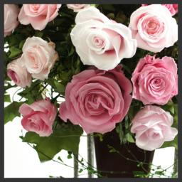 プリザーブドフラワーの花ギフトを結婚式の電報・祝電・母の日・誕生日・退職祝い・結婚記念日のお祝い・仏花に:サンクスブーケ