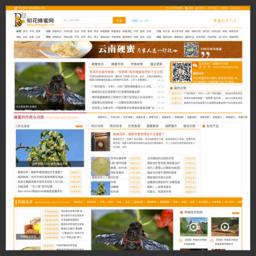 中华蜂蜜网_网站百科