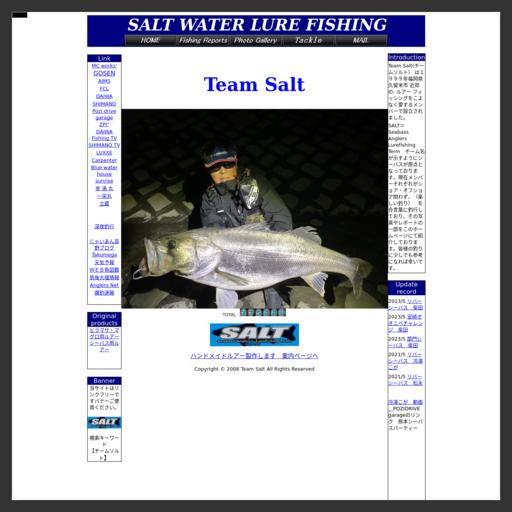 チームソルトのホームページ