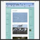 淡路島の野鳥ブログ...++