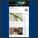 中村宏治のブログ