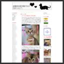 お散歩大好き猫ブログ