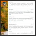 wys - 中国博客联盟