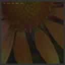 Be Five Ten