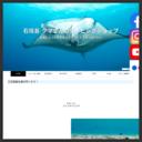 石垣島クマさんのダイビングショップ