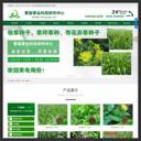 中国牧草网