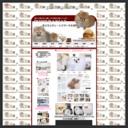 ポメラニアンブリーダー 子犬の販売