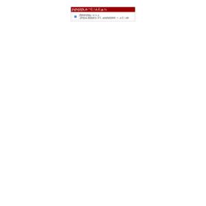 長崎国際大学/第18回開国祭